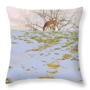 Serenity In The Spring Snow Throw Pillow
