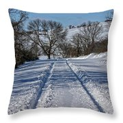Serenity Road Throw Pillow