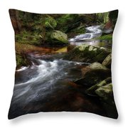 Serenity Sunrise Throw Pillow