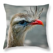 Seriema Bird Alert Throw Pillow