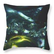 Series 14   Sparkle Path Throw Pillow