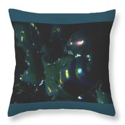 Series 2    Reef Fish Throw Pillow