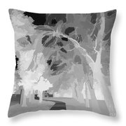 Series Of Black And White 47 Throw Pillow