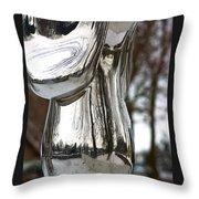 Globe Snow # 2. Throw Pillow