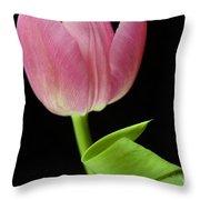 Seriously Pink 2 Throw Pillow