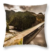 Serpentine River Crossing Throw Pillow
