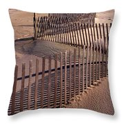 Serpentine Throw Pillow by Skip Willits