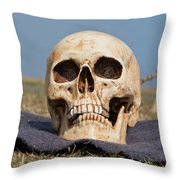 Service With A Smile Throw Pillow