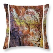 Set In Stone Triptych Throw Pillow