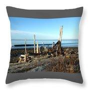 Seth's Seaside Driftwood Sculpture  Throw Pillow