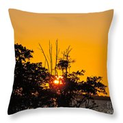 Setting Mangrove Sun Throw Pillow