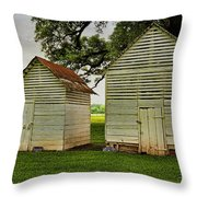 Setting Pen And Chicken Coop Throw Pillow