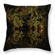 Setting Sun In Maurepas Swamp Throw Pillow