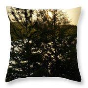Setting Sun Through A Cypress Tree Throw Pillow