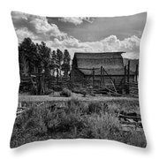 Settler's Barn Throw Pillow