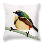 Seven Colors Throw Pillow