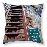 Seven Falls Pastoral Study 2 Throw Pillow