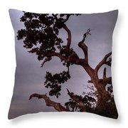 Seven Forty Pm Throw Pillow