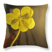 Seven Leaf Clover In Studio Throw Pillow