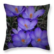 Seven Purple Crocuses Throw Pillow