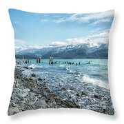 Seward Seashore Throw Pillow