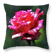 Sexy Rexy Rose Throw Pillow