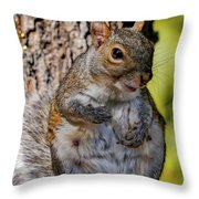 Sexy Squirrel Throw Pillow
