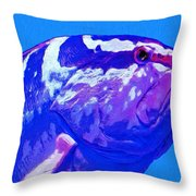 Seymour Throw Pillow