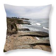 Seymour Marine Discovery Center Santa Cruz Throw Pillow