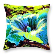 Sf Blossom Throw Pillow