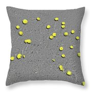 Sfscl00101 Throw Pillow