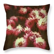 Shabby Chic Floral Design Throw Pillow