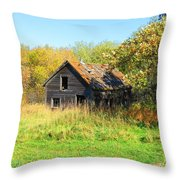 Shack In Fall Colours Throw Pillow