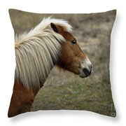 Shackleford Banks Throw Pillow