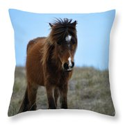 Shackleford Banks Pony Throw Pillow