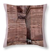 Shade Is Good Throw Pillow