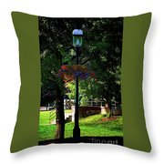Shaded Beauty Throw Pillow