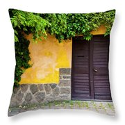Shaded Entrance Throw Pillow