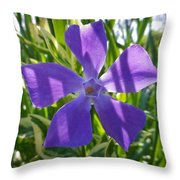 Shaded Greater Periwinkle Throw Pillow