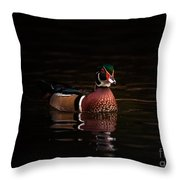 Shaded Wood Duck Throw Pillow