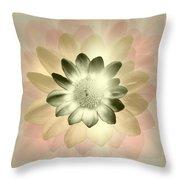 Shades Of A Daisy Throw Pillow