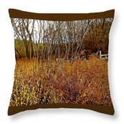 Shades Of Amber Throw Pillow