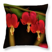 Shades Of Bleeding Hearts Throw Pillow