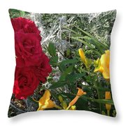 Shades Of Color  Throw Pillow