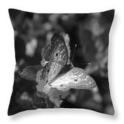 Shades Of Flight Throw Pillow