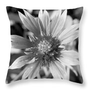 Shades Of Gray Flower By Earl's Photography Throw Pillow