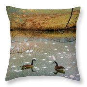 Shades Of Seasons Past Throw Pillow by Jan Amiss Photography