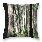 Shades Of Trees Throw Pillow