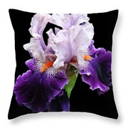 Shades Of Violet Throw Pillow