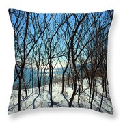 Shadow Branches Throw Pillow